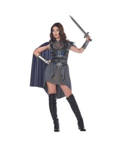 Lady Knight In Shining Armor 6pc Women Costume, Grey Purple, Small