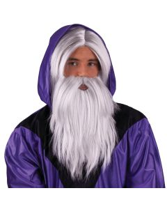 Funny Fashion Wizard or Moses Hair Costume 2pc Wig & Beard Set, Grey, One-Size