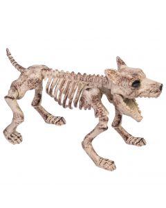 """Forum Bone Skeleton Dog Halloween Porch 19"""" Decoration Prop, Beige Black"""