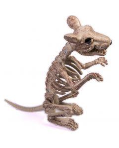 "Forum Posable Bone Skeleton Rat Halloween 9.5"" Decoration Prop, Beige Black"