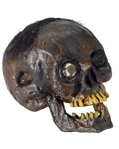 "Forum Rotting One-eyed Skull with hair 8"" Decoration Prop, Brown Yellow"