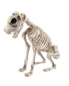 "Fun World Halloween Spooky Animal Skeleton Dog Decoration Prop, 17"", Beige Grey"