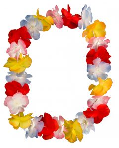 "Loftus Hawaiian Luau Bright Colors Party 36"" Fabric Leis, 12 CT"
