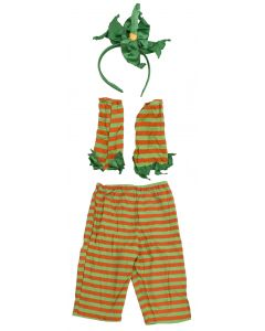 Halloween Harvest Fall 4pc Costume Accessory Set, Orange Green, Medium