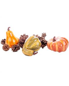 "Mini Fall Harvest Pumpkin Gourd & Pinecone Halloween 11pc 6"" Decoration Pack"